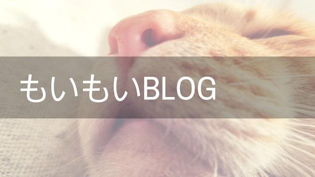 もいもいBLOG 犬猫・九州・ネットショッピング(メインブログ)